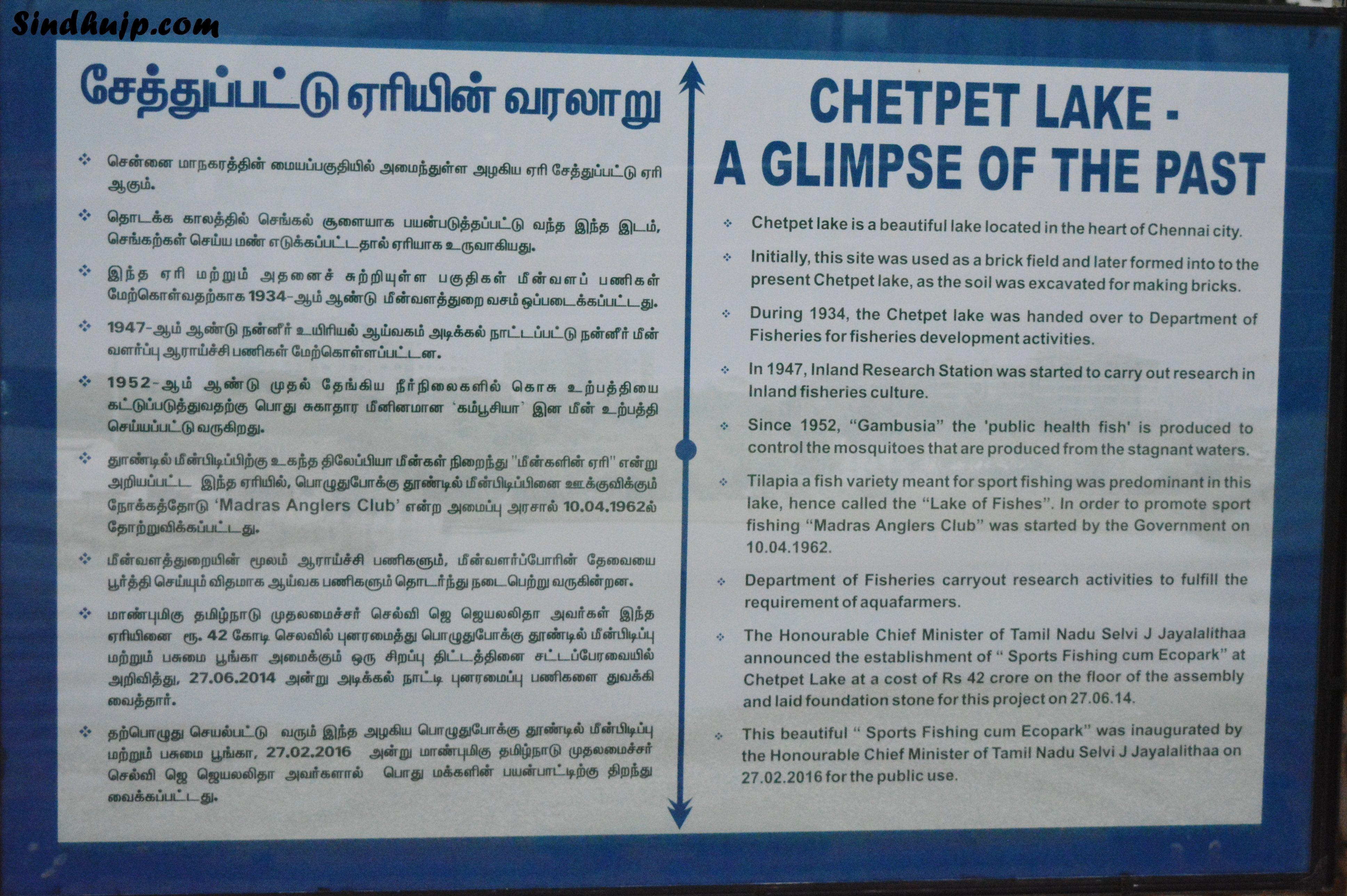 history of chetpet lake